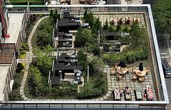green-roof1.jpg